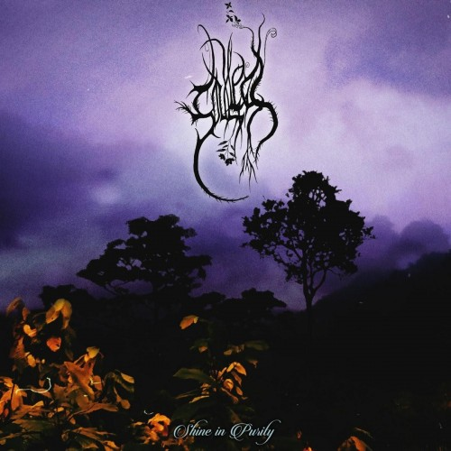 Shine In Purity-soulless-cd dig