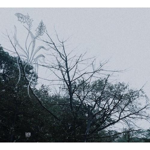 Rain-sadness-cd dig