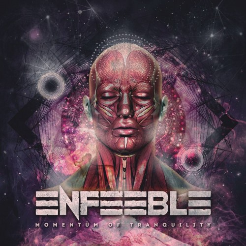 Momentum Of Tranquility - Enfeeble CD